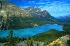 Peyto Lake is considered one of the most beautiful places in Canada. Situated inside the Banff National Park in the State of Alberta, the glacial lake is nearly 2,000 meters above sea