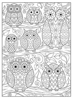 Groovy Owls Coloring Book by Thaneeya McArdle features 32 coloring pages of delightful whimsmical owls, plus tutorials and colored examples. Owl Coloring Pages, Pattern Coloring Pages, Printable Adult Coloring Pages, Coloring Sheets, Coloring Books, Owl Crafts, Owl Patterns, Owl Art, Cute Owl