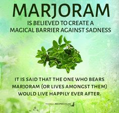 ∆ Enchantments... Marjoram