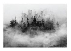 Lost in the Fog by Mo Rutkin for Minted.