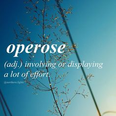 """Latin //op-uh-rohs// Ex: """"Clearing the woods was an operose job."""" or, """"The operose worker accomplishes much."""""""