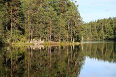 Insert > Haukkalampi, Nuuksio Finland