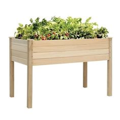 Wooden Raised Vegetable Garden Bed Elevated Planter Flower Box Grow Kit Herb Gardening Plant Outdoor Patio Backyard Flowers Vegetables - All About Vegetable Planter Boxes, Garden Planter Boxes, Raised Planter Boxes, Planter Beds, Wooden Raised Garden Bed, Raised Patio, Wooden Garden, Glass Garden, Growing Herbs