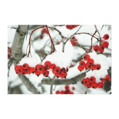 Snowberries Wrapped Canvas Print