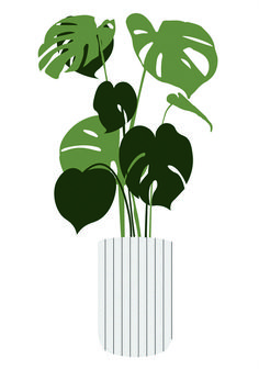 Vector Plants  Interior Potted Plants Vector for Architecture   toffu.co  The post Vector Plants appeared first on Architecture Diy.