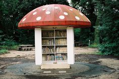 Charming mushroom fort, little library. It's not a room, technically, but I love this little outdoor library....