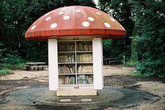 Little mushroom library