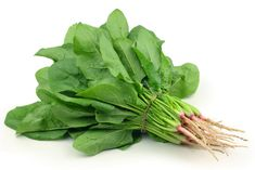 Spinach is green-leafy vegetable with broad leaves. It is seasonal vegetable and belongs to family Amaranthaceae. Botanical name for spinach is Spinacia oleracea and commonly famous as Paalak in Hindi. Homemade Baby, How To Make Homemade, Rabbit Eating, Healthy Green Smoothies, Iron Rich Foods, How To Grow Taller, Lower Cholesterol, Health And Beauty Tips, Cauliflowers