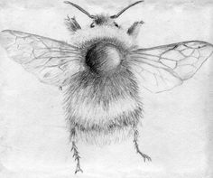 Little image of a bumble bee I sketched