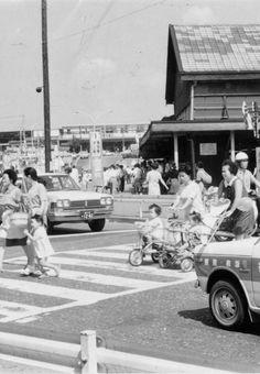 1969年(昭和44年) 品川区大井1丁目 乳母車を押して横断歩道を渡る女性
