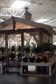 Salvaged French greenhouse at Rolling Greens Nursery
