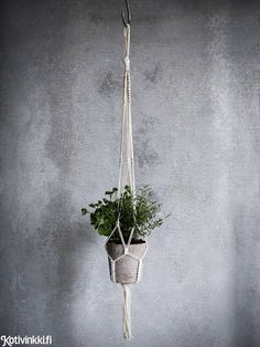 Macrame flower pot holder with instructions Inside A House, Diy And Crafts, Arts And Crafts, Flower Pots, Flowers, Hanging Planters, Plant Holders, Diy Organization, Plant Hanger