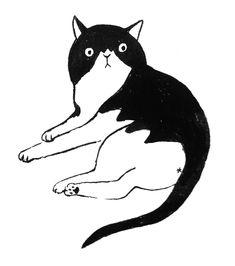 Cat on Behance - Кошки - Katzen Art And Illustration, Gato Anime, Mr Cat, Fat Cats, Cat Drawing, Gravure, Cool Cats, Cat Art, Cat Lovers