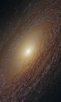 Spiral Galaxy NGC 2841 NASA's Hubble Space Telescope