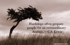 Hardships often prepare people for an extraordinary destiny. Let them build character and make you stronger as you journey through life. See full picture quote> Think Deeply, Extraordinary People, Joy Of Life, Spiritual Quotes, Picture Quotes, Destiny, Spirituality, Journey, Pictures