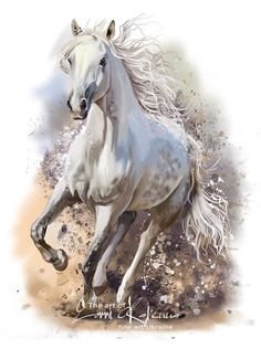 Items similar to White Horse Running Mixed Media Painting Art W Gallery Wrap Style Ready To Hang Up To Centimeters on Etsy Watercolor Horse, Watercolor Animals, Watercolor Paintings, Painting Art, Watercolor Drawing, Horse Drawings, Animal Drawings, Cavalo Wallpaper, White Horse Painting