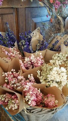 Most Beautiful Flowers, Pretty Flowers, Fresh Flowers, Dried Flowers, Mothers Day Flower Pot, Dried And Pressed Flowers, Bloom Baby, Bloom Where You Are Planted, Autumn Decorating
