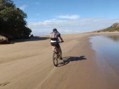 Trail Options – Singletrack Adventures Mountain Bike Trails, Big 5, Mtb, Coast, Explore, Adventure, Pictures, Photos, Photo Illustration