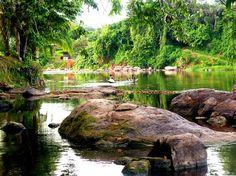 :: Access Suriname Travel : toerisme met karakter ::
