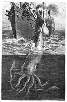 """Illustration d'une scène de #pêche sur l'Alecton, navire à vapeur. L'équipage tente de ramener un #poulpe gigantesque pris dans les environs de Ténériffe, récit à lire dans """"La vie et les moeurs des #animaux"""" de Louis Figuier en 1866 #numelyo #aquatique #océan #bestiaire"""