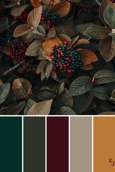 Best color schemes, color combinations, paint colors for home, house colors Color Schemes Colour Palettes, Fall Color Palette, Colour Pallette, Color Combos, Fall Color Schemes, Vintage Color Palettes, Wedding Colour Palettes, Orange Color Palettes, Vintage Colors