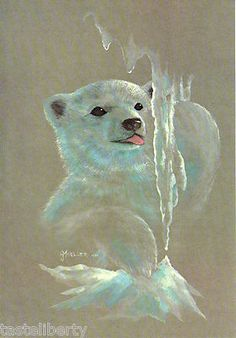 Vintage Print Art Moeller Polar Bear Cub Inuit Eskimo Ice North Pole Baby | eBay