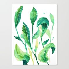 Check out society6curated.com for more! I am a part of the society6 curators program and each purchase through these links will help out myself and other artists. Thanks for looking! @society6 #illustration #wall #apartment #decor #homedecor #buy #shop #sale #drawing #canvas #artprint #shopping #apartmentgoals #sophomoreyear #sophomore #year #college #student #home #house #gift #idea #art #buyart #green #white #watercolor #drawing #nature #natural #organic #botanical