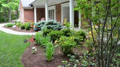 Low-flow irrigation can water your lawn and plants while preventing runoff.