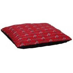 Ohio State 36 x 42 inch Pet Pillow Bed! I have one for each of my 4 Kitty's and they have OHIO STATE BUCKEYE COLLARS TOO!