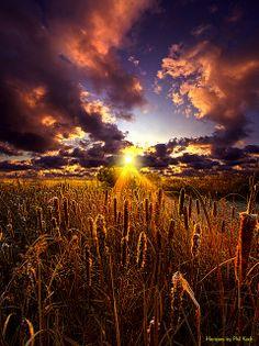 Sun Gazing | Flickr - Photo Sharing!