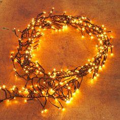 Pflanzen-Kölle LED Gruppenbeleuchtung 288 Lichter, Classic Warm, 2,4 m, schwarzes Kabel  Für stimmungsvolle Lichterdekorationen Innen und Außen: Klassisch goldgelb leuchtende Gruppenbeleuchtung mit 288 Lichtern und schwarzem Kabel.