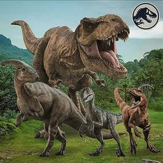 Dinosaur Photo, Dinosaur Images, Jurassic World Dinosaurs, Jurassic Park World, Prehistoric World, Prehistoric Animals, Jurassic World Fallen Kingdom, Falling Kingdoms, Tyrannosaurus