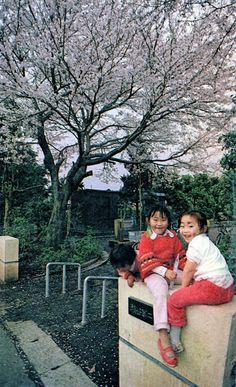1980年頃、瀬谷第二児童公園(瀬谷町)