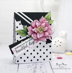 "Brigit's Scraps ""Where Scraps Become Treasures"": Beautiful Day - Hero Arts April My Monthly Hero Kit SVGCuts Gift Bag"