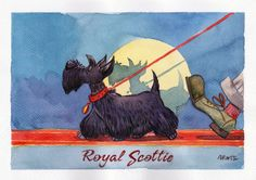 Original Royal scottie watercolour painting.    NOTE: It is a preview scan you see. Original has no blur spots and is in full clear quality.    Painted on A4 high quality watercolour white hard paper.    Artist: Martynas Juchnevicius  www.martoonz.blogspot.com    Original will be shipped in a flat protective sleeve and hard backed A 4 size envelope.    © Martynas Juchnevicius All Rights Received.