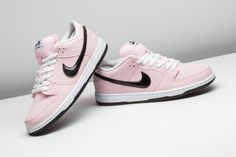 brand new 34e38 d5d1d Nike Dunk Low Elite SB