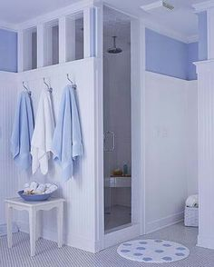Bathroom ideas Like idea of walk in but no step & must have seat w/handrails & probably a wider opening.