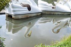 Projeto 365 Inspirações - FOTO 55  #365inspiracoes #reflection #reflexo #agua #water #pedalinho