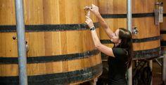 Winemaker Stephanie reaching new heights in the cellar. #FairviewWine #FairviewFamily www.fairview.co.za Cellar, Beer, Wine, Mugs, People, Root Beer, Cups, Mug, People Illustration