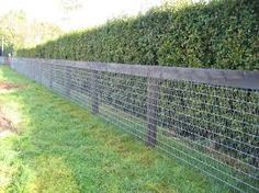 Image result for post and rail fence with wire mesh