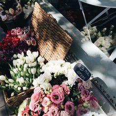 buy me flowers.