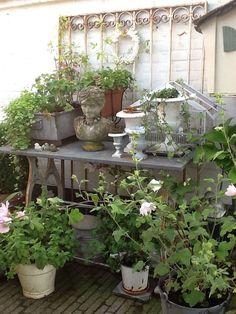 Outdoor planting station and display 27 Garden Shop, Dream Garden, Garden Pots, Outdoor Landscaping, Outdoor Plants, Outdoor Gardens, Sacred Garden, Potting Tables, Shabby Chic Garden