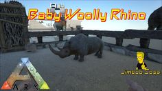 Baby Rhino, Ark, Video Games, Survival, Videogames, Baby Hippo, Video Game