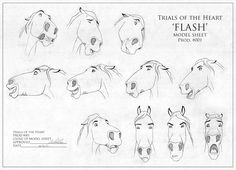 Horse facial expressions || CHARACTER DESIGN REFERENCES | Find more at https://www.facebook.com/CharacterDesignReferences
