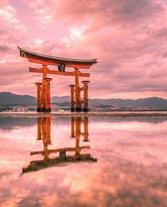 The sacred island of Miyajima is one of the top scenic spots in southern Japan. L'île sacrée de Miyajima est un incontournable de tout voyage dans le sud du Japon. Photo Japon, Japan Photo, Places Around The World, Around The Worlds, Beautiful Places In Japan, Japon Tokyo, Torii Gate, Hiroshima Japan, Japan Landscape