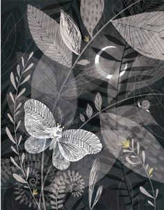 Illustrator Claire Mojher created exquisite series that revolves around a garden. Beautiful and detailed, I'm pulled in by her multi-layered compositions.
