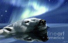 Aurora Dreaming  by Skye Ryan-Evans