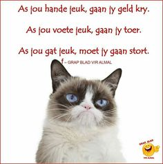 Grappie Afrikaanse Quotes, Love Quotes, Jokes, Motivation, Funny, Paper Craft, African, Qoutes Of Love, Quotes Love