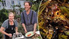 """Mandelmanns supertips för vackra krukväxter: """"Galet bra"""" Garden, Joy, Tips, Flowers, Pebble Stone, Garten, Advice, Gardening, Glee"""
