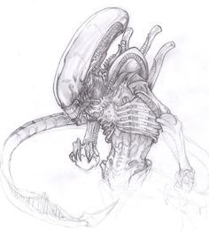 """Alien: Xenomorph - Giger decided on the creature to have no eyes, as """"he felt that it made the creatures much more frightening if one could not tell they were looking at them"""". (Picture by Deviantart user ChrisOzFulton, date unknown) Alien Vs Predator, Predator Alien, Les Aliens, Aliens Movie, Arte Alien, Alien Art, Xenomorph, Giger Alien, Dragons"""